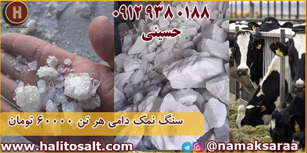 خرید سنگ نمک دام